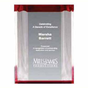 Channel Mirror Acrylic Award