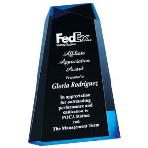 Wedge Acrylic Award