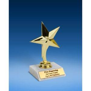 """Star Trophy 6"""""""