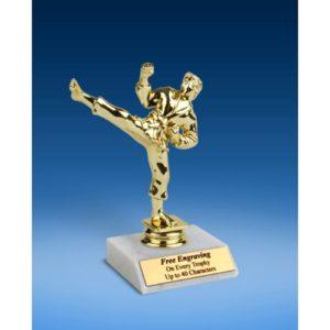 "Martial Arts Sport Figure Trophy 6"""