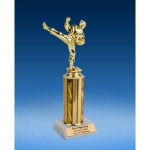 "Martial Arts Sport Figure Trophy 10"""