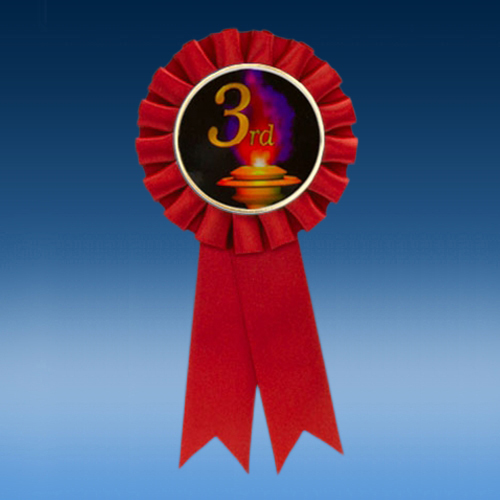 3rd Participation Ribbon