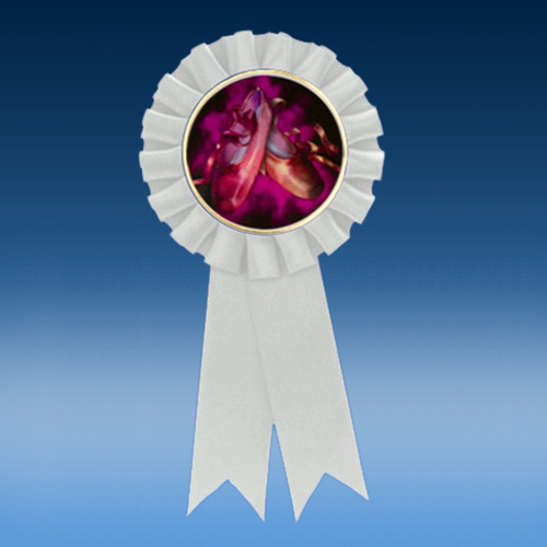 Dance 2 Participation Ribbon