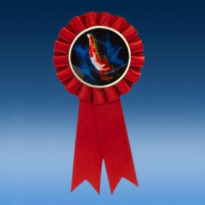 Gymnastics Male Participation Ribbon