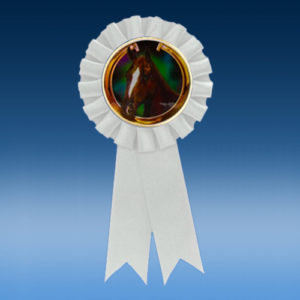 Horse Participation Ribbon
