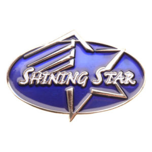Shining Star Achievement Pin-0