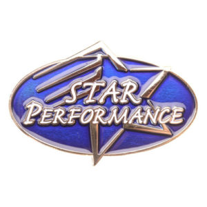 Star Performance Achievement Pin-0