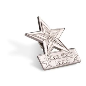 Silver Star Award Lapel Pin