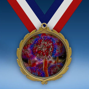 Cheerleading 2 Wreath Medal-0