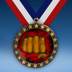 Martial Arts 20 Star Medal-0