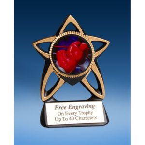 Boxing Gold Star Mylar Holder