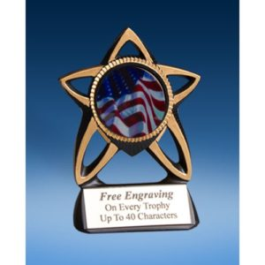 USA Gold Star Mylar Holder