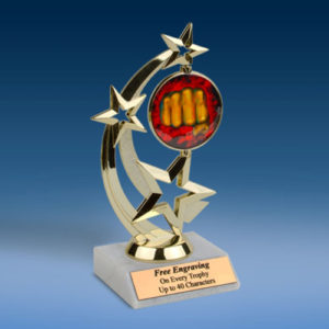 Martial Arts Astro Spinner Trophy-0