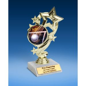 Volleyball Star Ribbon Trophy 6""