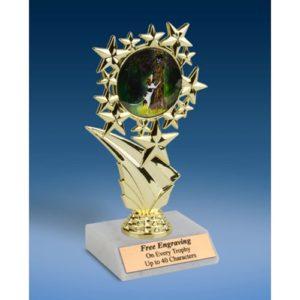 """Hunting Sports Starz Trophy 6"""""""
