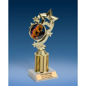 "Body Building Star Ribbon Trophy 8"""