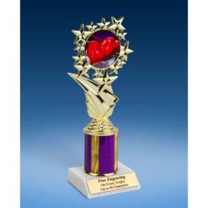 "Boxing Sport Starz Trophy 8"""