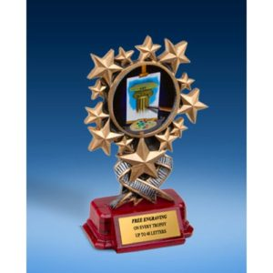 Art Resin Starburst Award