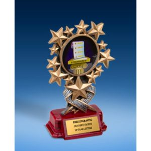 Attendance Resin Starburst Award