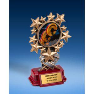 Bodybuilding Resin Starburst Award