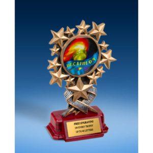 Decathlon Resin Starburst Award