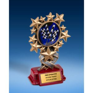 Derby Resin Starburst Award