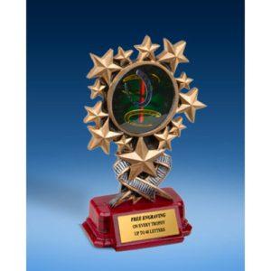 Horse Shoe Resin Starburst Award