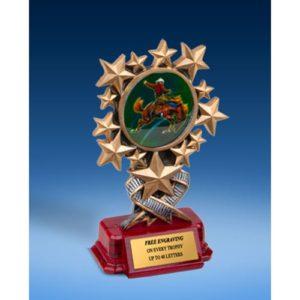 Horse Riding Resin Starburst Award