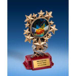 Sales Resin Starburst Award