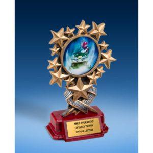 Snowmobile Resin Starburst Award