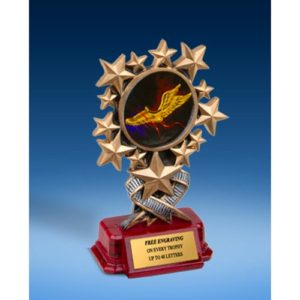 Track Resin Starburst Award