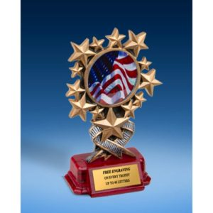USA Resin Starburst Award