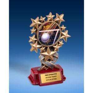 Volleyball Resin Starburst Award