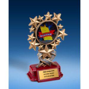Manager Resin Starburst Award