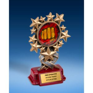 Karate Resin Starburst Award
