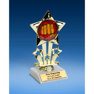 Karate Quad Star Mylar Holder Trophy 6""