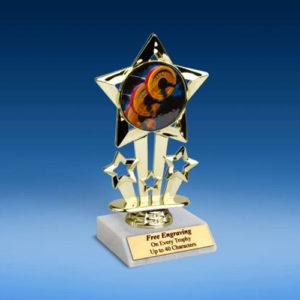 "Bodybuilding Quad Star Mylar Holder Trophy 6""-0"
