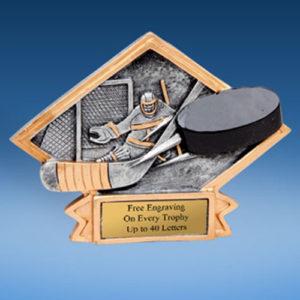 Hockey Diamond Resin Plate