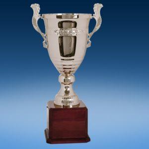 "21"" Perpetual Cup"