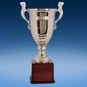"26"" Perpetual Cup"