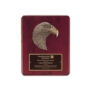 Bronze Eagle Plaque