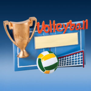 Volleyball Winners Cup Resin