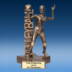 Volleyball Female Billboard Resin