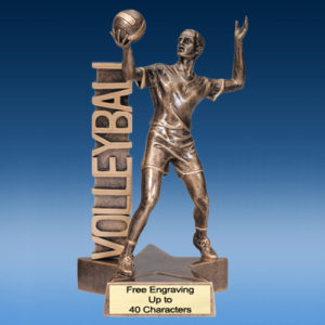Volleyball Male Billboard Resin