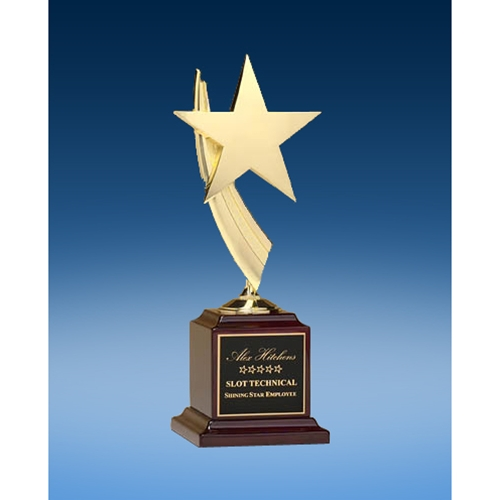 Constellation Award