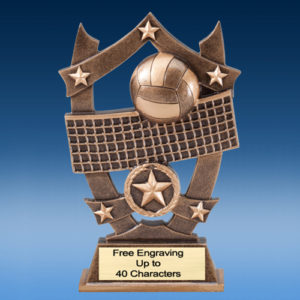 Volleyball Star Shield Resin
