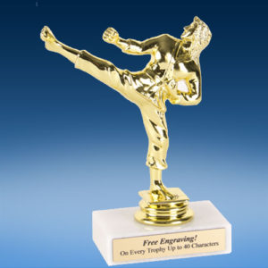 "Martial Arts Female Econoline Trophy 6""-0"