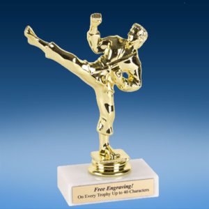 "Martial Arts Male Econoline Trophy 6""-0"