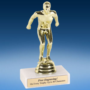 "Swimming Male Econoline Trophy 6""-0"