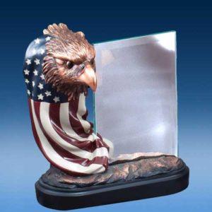 USA Eagle Head and Glass-0